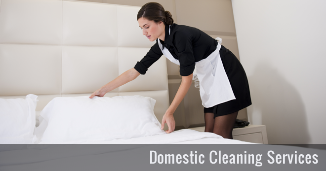 domestic house cleaning services